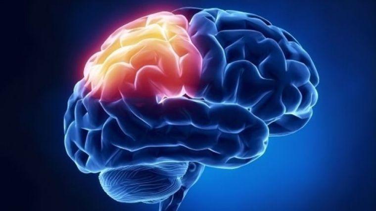 Brain Recovery